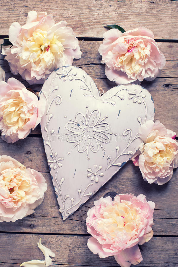 Zarte rosa Pfingstrosenblumen und dekoratives Herz auf Weinlese w stockbild