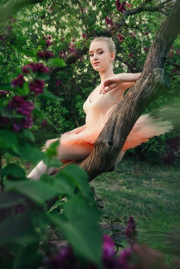 Zarte und romantische Ballerina, die im Blumengarten sich entspannt stockfotos