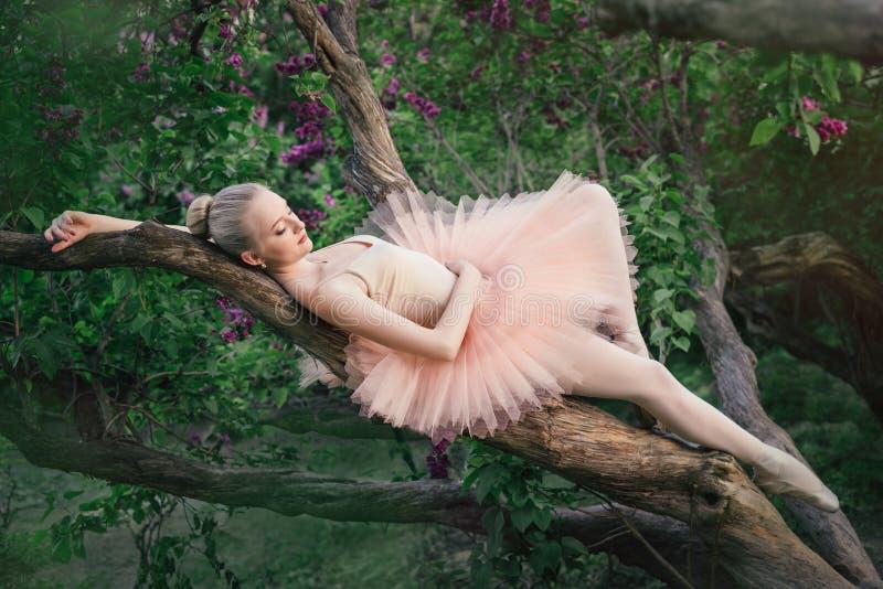 Zarte und romantische Ballerina, die im Blumengarten sich entspannt stockbilder