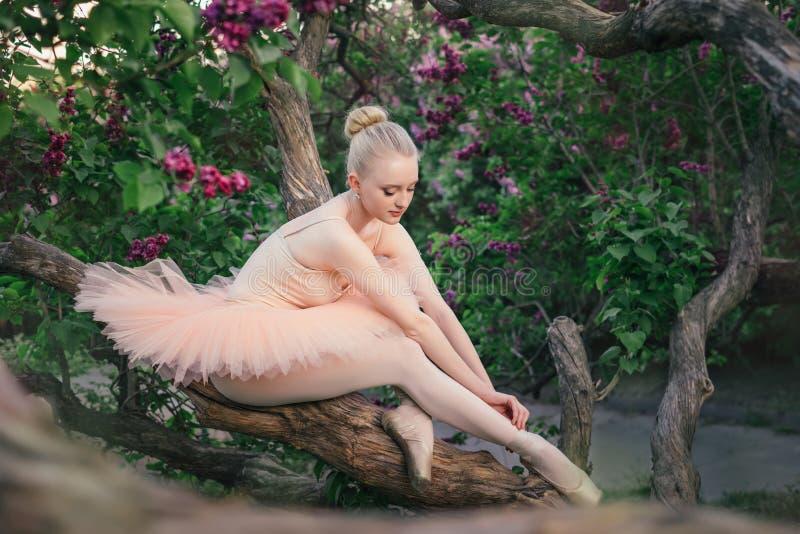 Zarte und romantische Ballerina, die im Blumengarten sich entspannt stockfoto