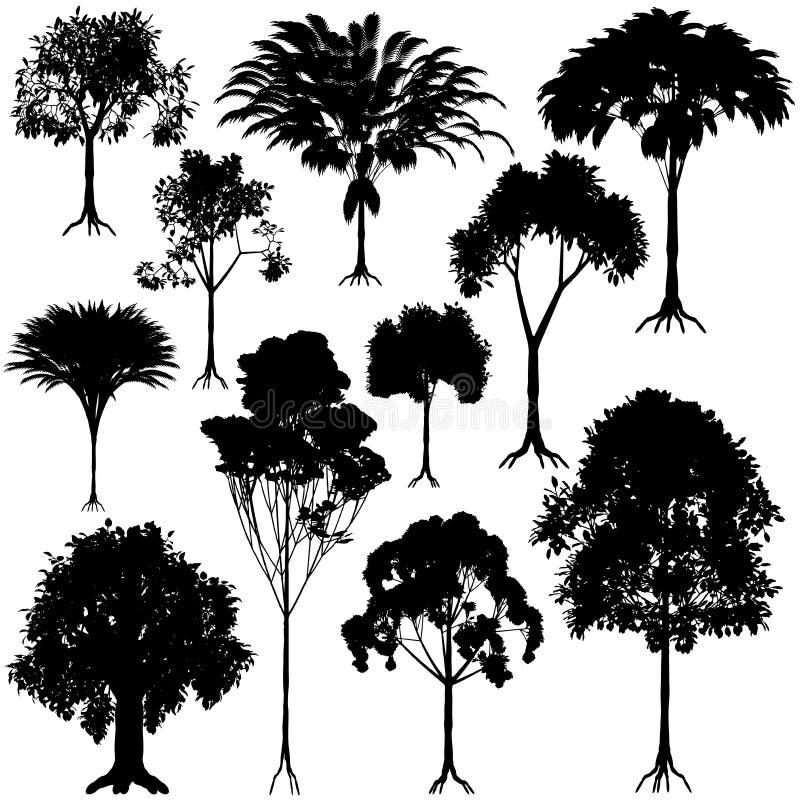 zarysowywa drzewa ilustracja wektor