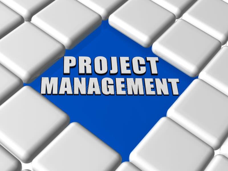 Zarządzanie projektem w pudełkach ilustracji