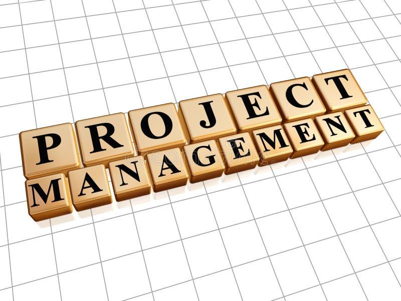 Zarządzanie projektem w złotych sześcianach ilustracji