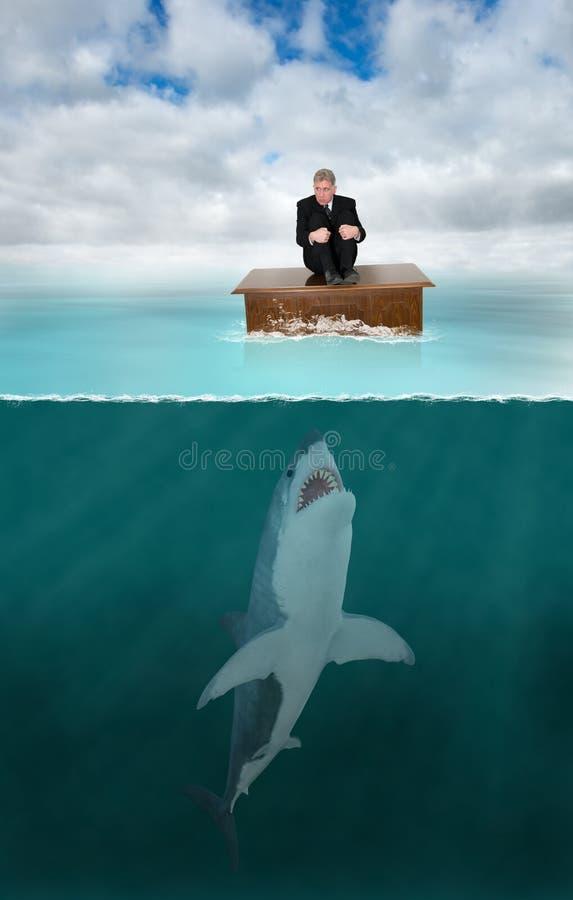 Zarządzanie ryzykiem, prawnik, rekin, sprzedaże fotografia royalty free