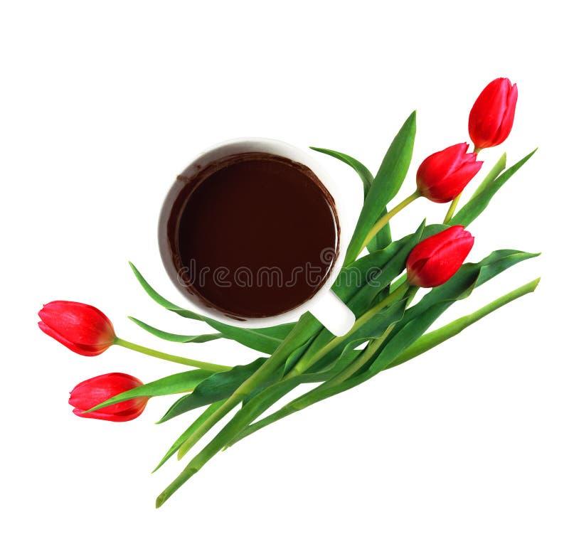 Zasięrzutny widok filiżanka gorąca czekolada i czerwoni tulipany odizolowywający dalej zdjęcia stock