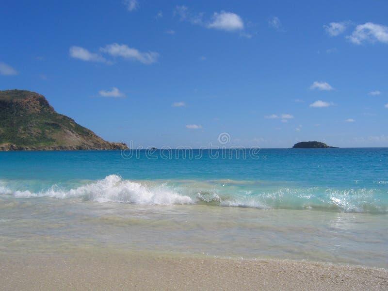Zasolona plaża, St. Barts, Francuscy Zachodni Indies zdjęcie stock