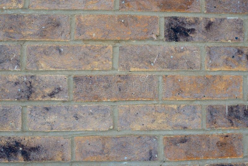 Zatarty stary beżowy brąz ściany z cegieł tekstury tło fotografia royalty free