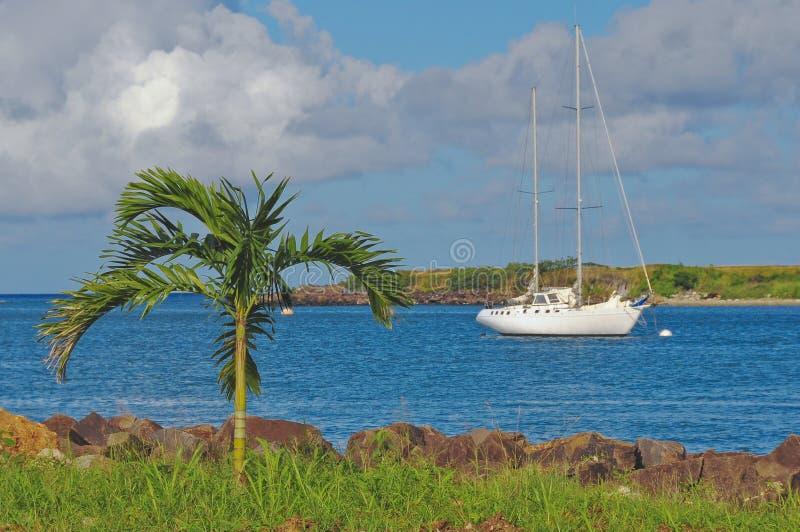zatoka tropikalna obrazy royalty free