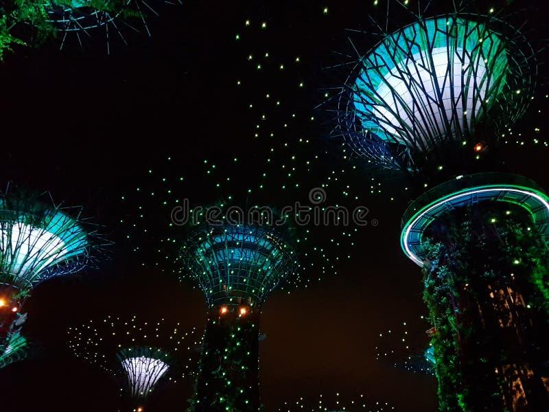 zatoka uprawia ogródek Singapore zdjęcie stock