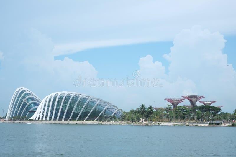 zatoka uprawia ogródek Singapore zdjęcia stock
