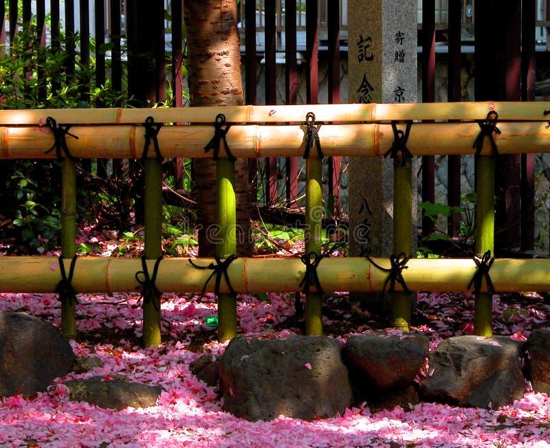 Zaun und Blumenblätter stockfotos