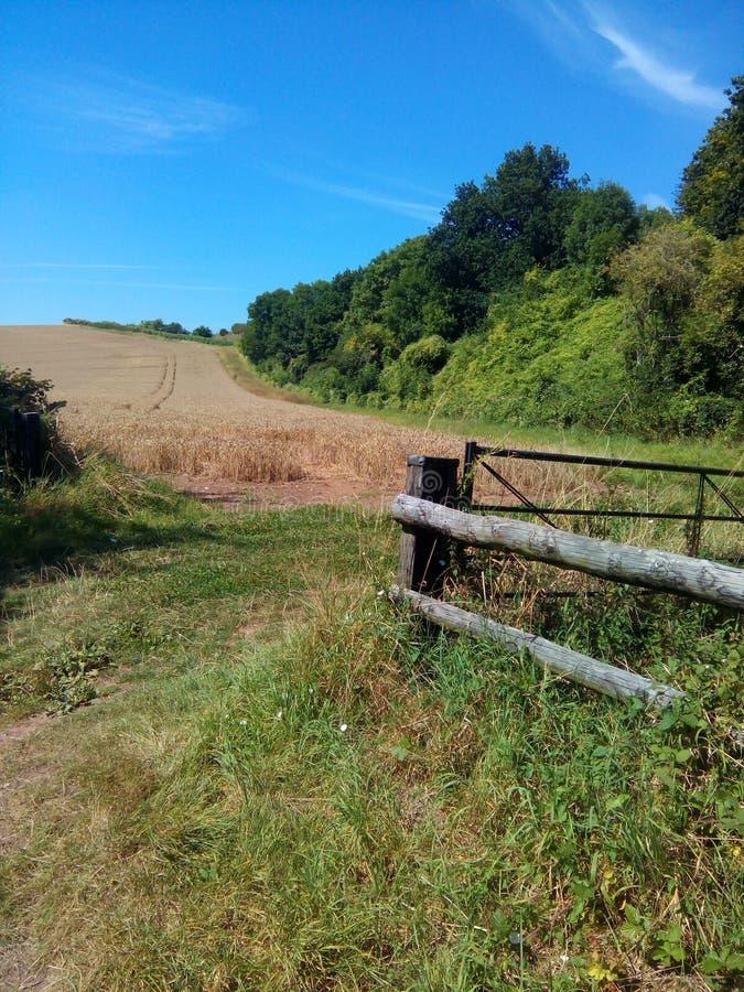 Zaun und Feld lizenzfreie stockbilder