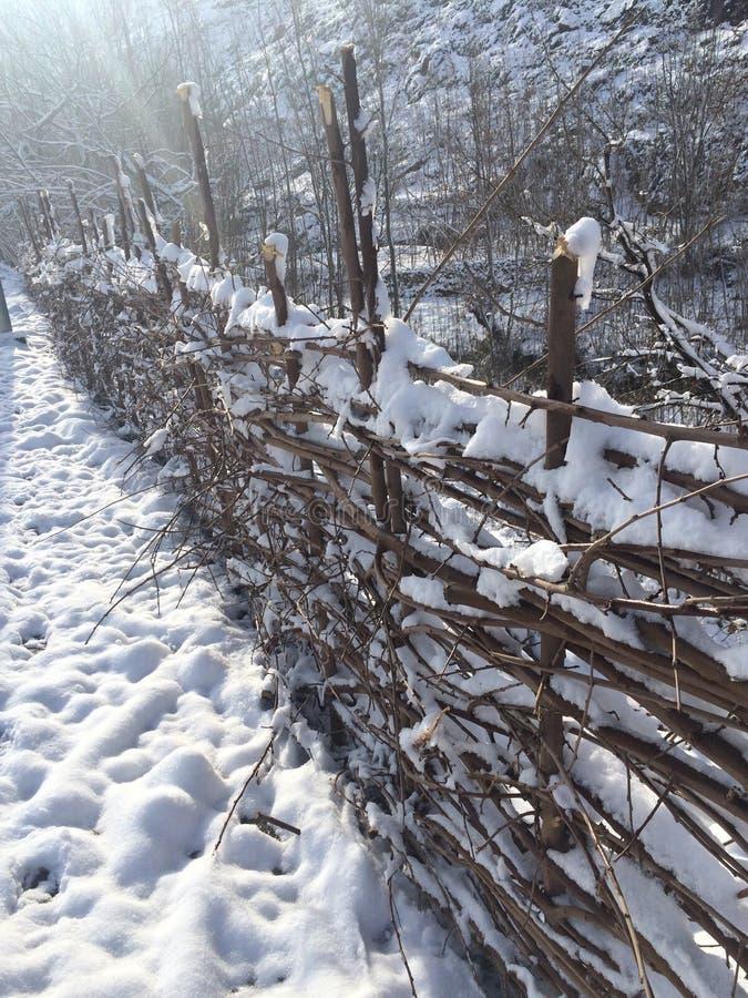 Zaun und Schnee lizenzfreie stockfotografie