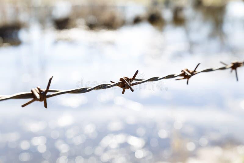 Zaun von Eisendornen lizenzfreie stockfotografie