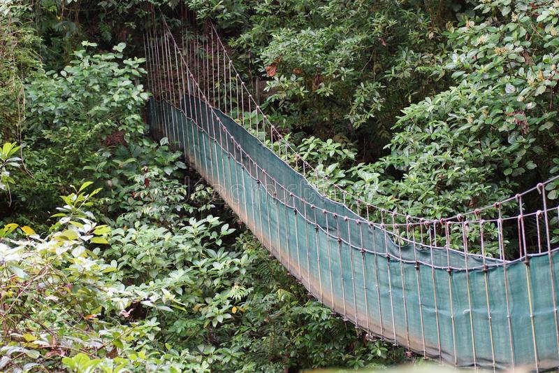 Zawieszeni mosty Arenal wulkan Alajuela, San Carlos, Arenal, Costa Rica obrazy stock