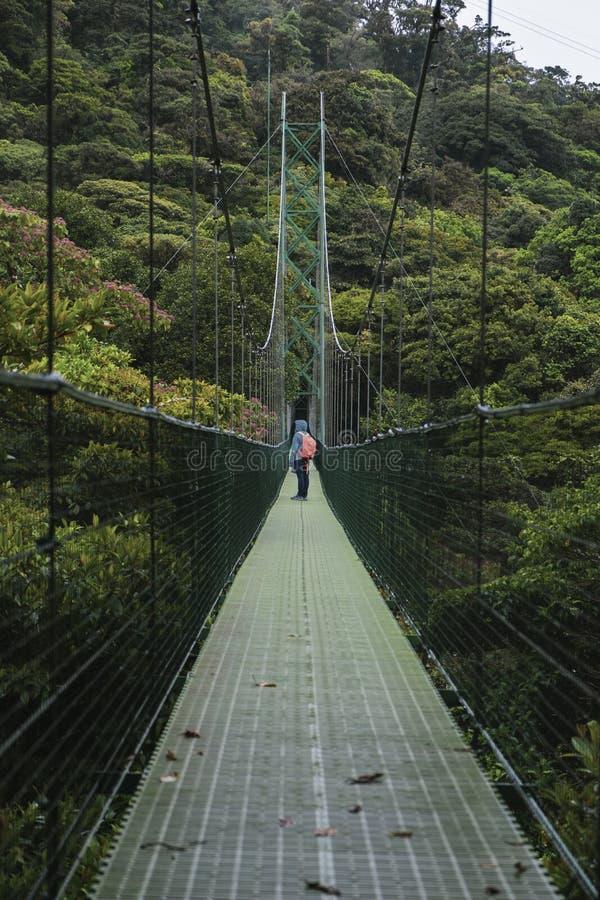 Zawieszenie most w Monteverde Costa Rica fotografia stock