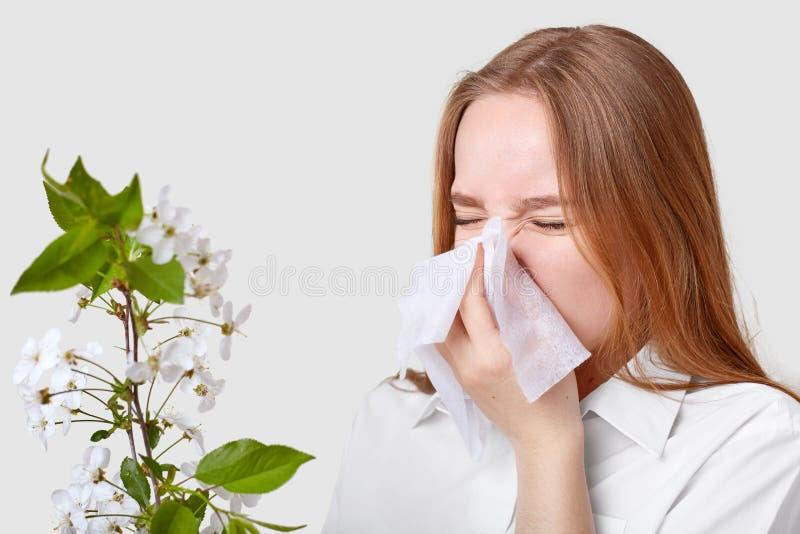Zawodząca chora młoda kobieta kicha w tkance, marszczy brwi twarz, działającego nos, pozuje blisko okwitnięcie gałąź, jest ubrany zdjęcia stock