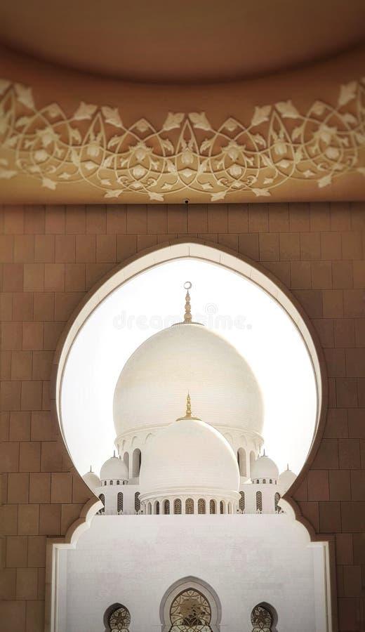 zayed шейх мечети стоковые изображения