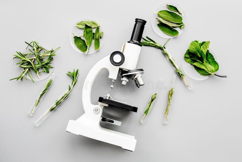 Zbawczy jedzenie Laboratorium dla karmowej analizy Zielenie blisko mikroskopu na popielatego tła odgórnym widoku obrazy stock