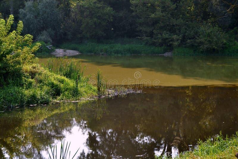 Zbieżność Mukhavets zmroku wody w Zachodniej pluskwie zdjęcia royalty free