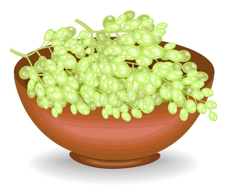 Zbierał wielkodusznego żniwo puchar foluje dojrzałe soczyste jagody Świezi piękni biali winogrona, źródło witaminy, i ilustracji