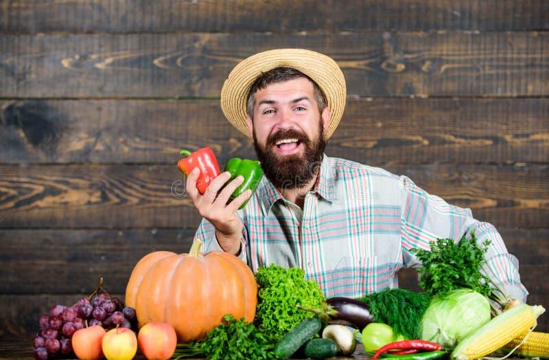 Zbiera? warzywa m??czyzny szef kuchni z bogat? jesieni upraw? sezonowy witaminy jedzenie Po?ytecznie owoc i warzywo brodaty doro? fotografia stock
