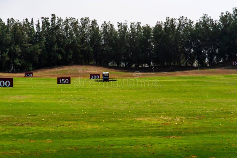 Zbierackie piłki na grać w golfa kursie obrazy stock