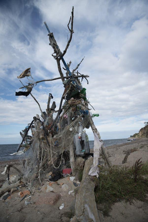 Zbierający odpady przy plażą zdjęcie royalty free