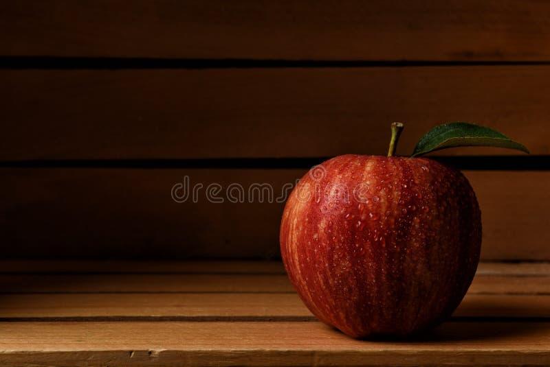 Zbliżenie pojedynczy Galowy Apple w drewnianej kocowanie skrzynce fotografia stock