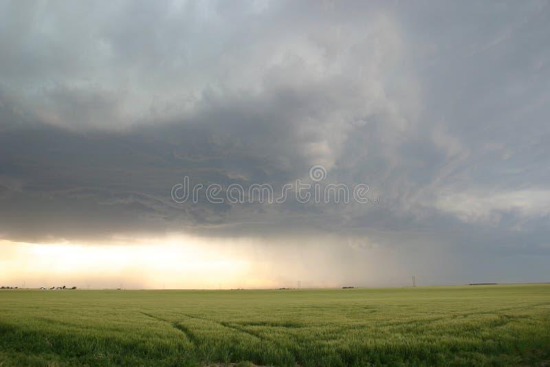 zbliża się do pola nad burzy pszenicą obraz stock