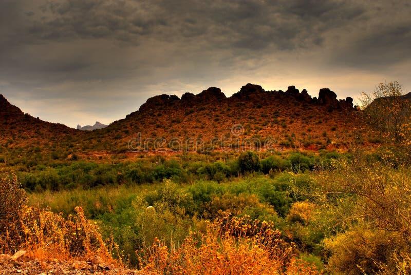 zbliżamy się do pustynną burzę fotografia royalty free