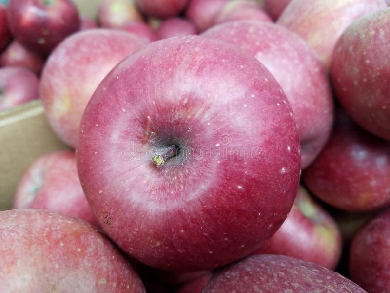 Zbliżeń jabłka na targowym dniu fotografia royalty free