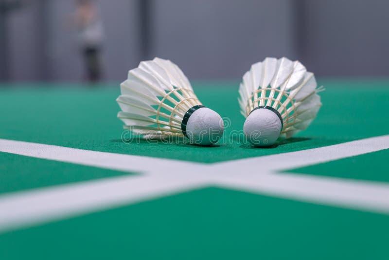 zbliżenia badminton shuttlecock na zieleń sądzie obraz royalty free