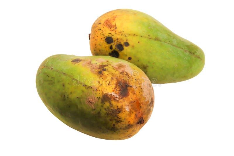Zbliżenia dwa koloru żółtego mango odizolowywający na białym tle zdjęcia stock