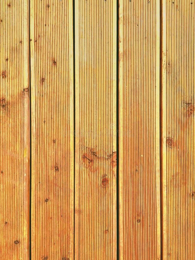 Zbliżenie świeży oliwiący douglasien taras deski obraz stock