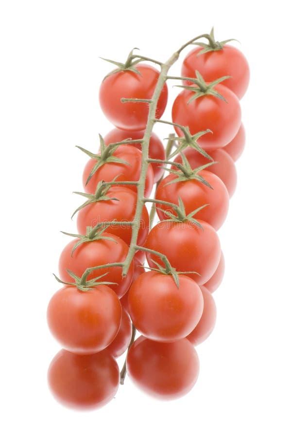zbliżenie biel czerwony pomidorowy obrazy royalty free