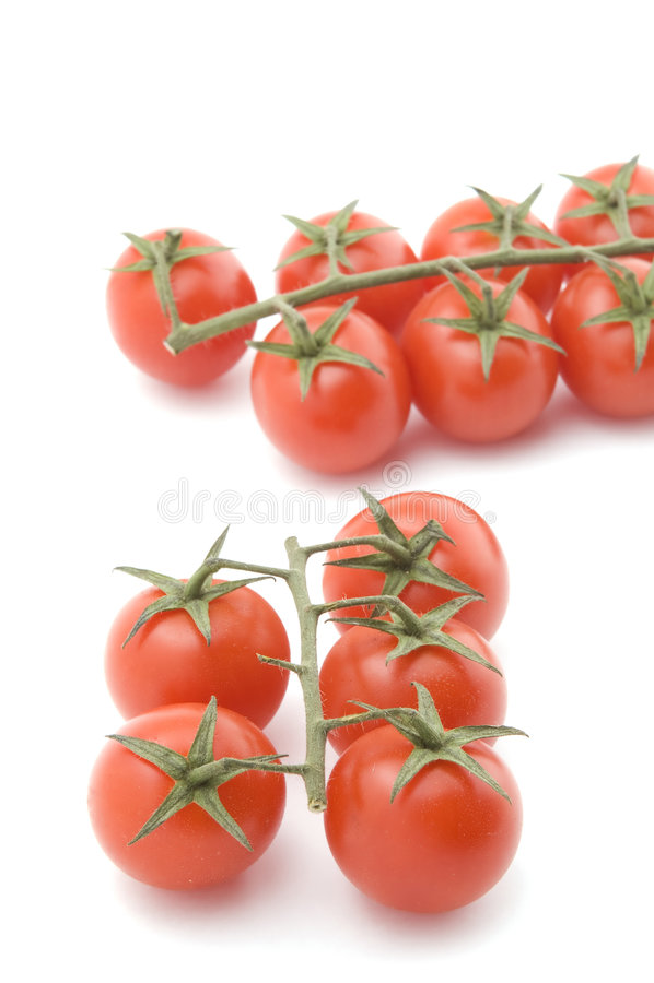 zbliżenie biel surowy pomidorowy obraz royalty free