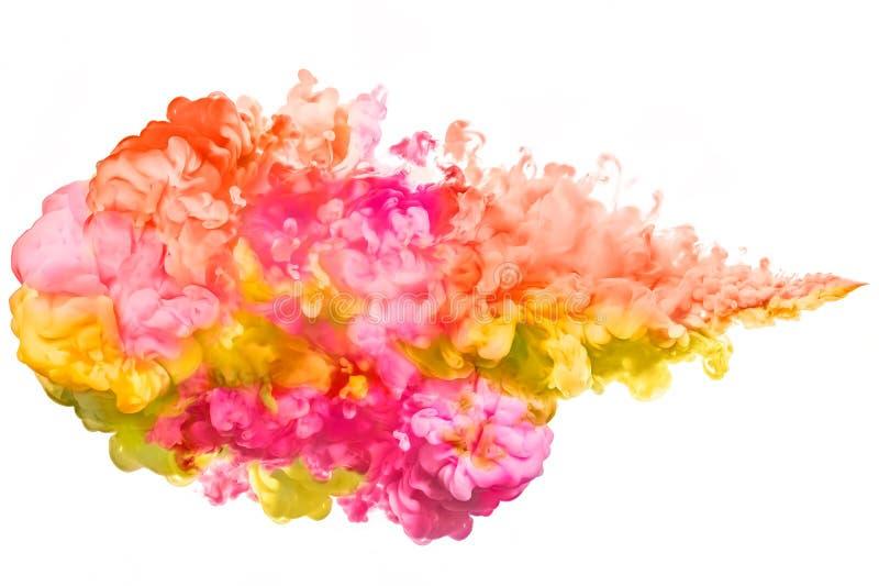 Zbliżenie colourful atrament w wodzie na białym tle z kopii przestrzenią barwi tęczę abstrakcjonistycznego kolor tła eksplozji fr fotografia stock