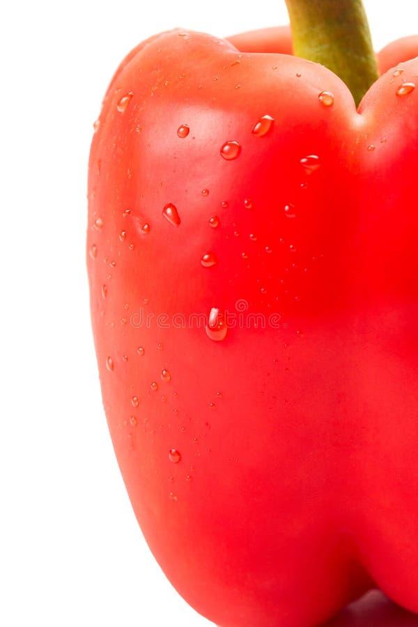 Zbliżenie czerwony pieprz z wodnymi kroplami fotografia stock