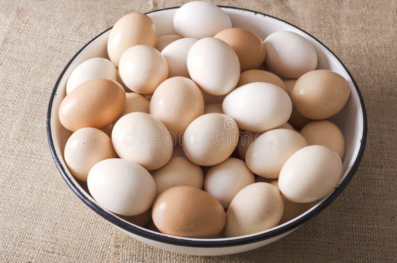 Zbliżenie duży puchar z udziałem jajka t?a poj?cia ucho gospodarstwa rolnego stary cienia banatki drewno Zbierający świezi jajka obraz royalty free