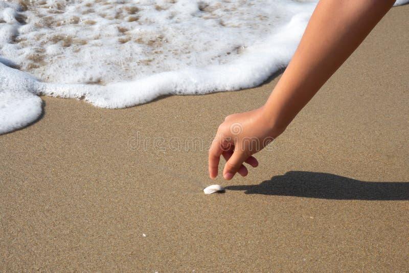 Zbliżenie dziewczyny ręki zrywania skorupa na plaży z falowym bąbla tłem zdjęcia stock