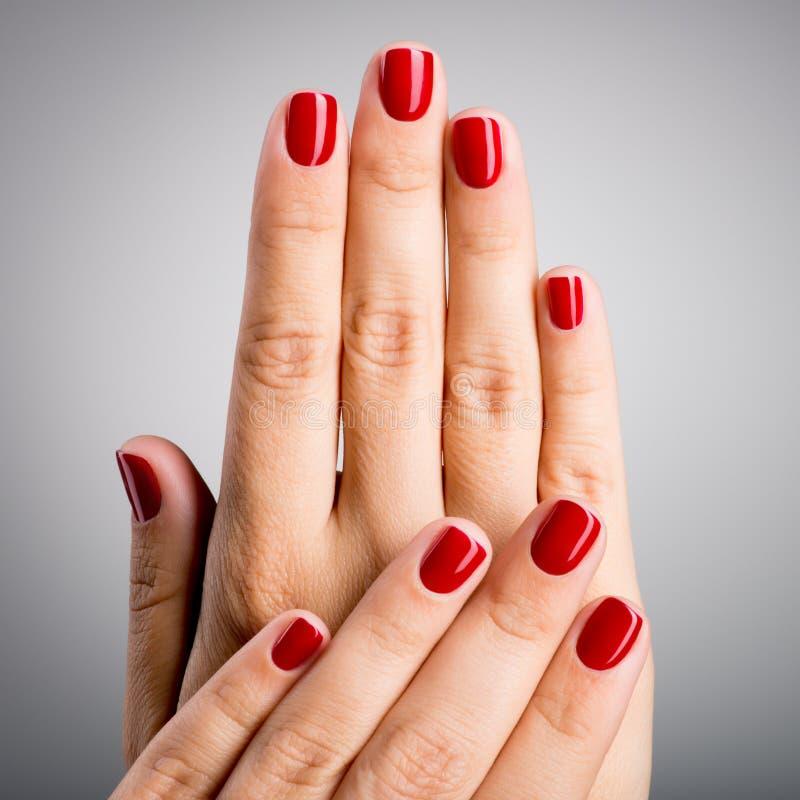Zbliżenie fotografia kobiety ręki z czerwonymi gwoździami fotografia stock