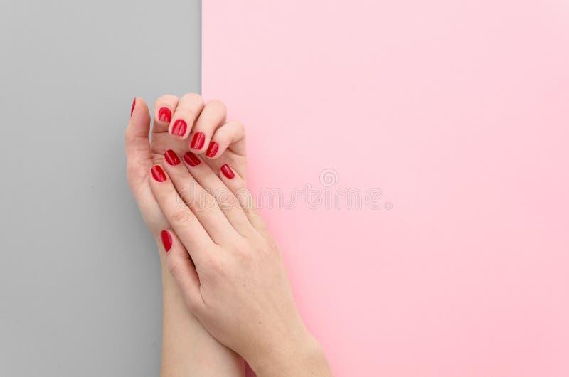 Zbliżenie fotografia piękne żeńskie ręki z czerwonymi gwoździami na jaskrawym rozszczepionym duotone koloru tle siwieje i różowi  obraz royalty free