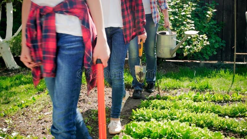Zbliżenie fotografia rodzinni mienia ogrodnictwa narzędzia chodzi przy podwórka ogródem obraz royalty free