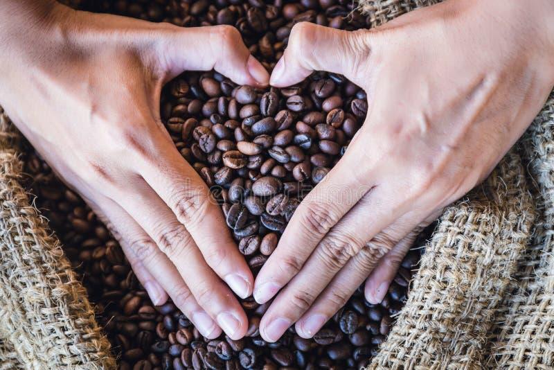 Zbliżenie kawowe fasole w rękach kształtować z światłem słonecznym w gunny serce zdosą zdjęcie royalty free