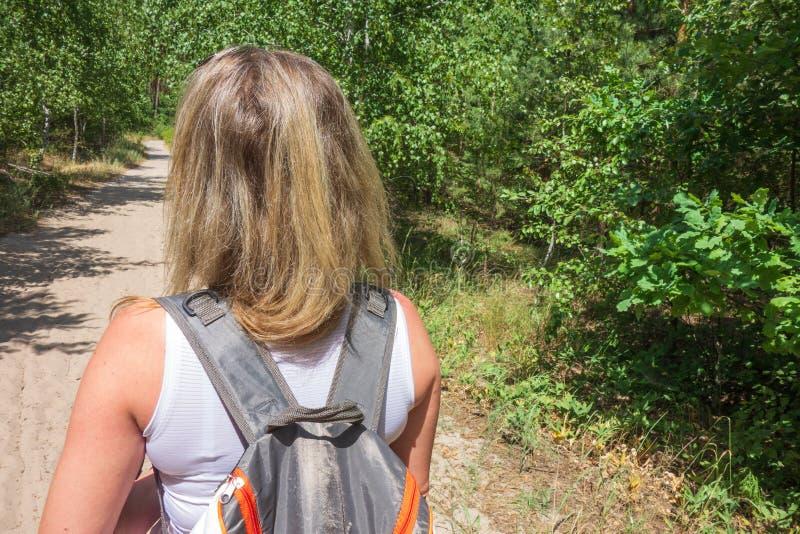 Zbliżenie kobieta z plecakiem na trailway w jodły, sosen lasowym pojęciu i, obraz royalty free