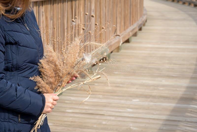 Zbliżenie kobiety mienia bukiet wildflowers zdjęcia stock