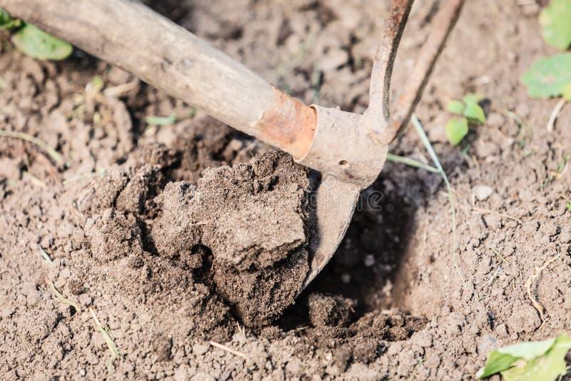 Zbliżenie kobiety ogrodniczki głębienia ziemia obraz stock
