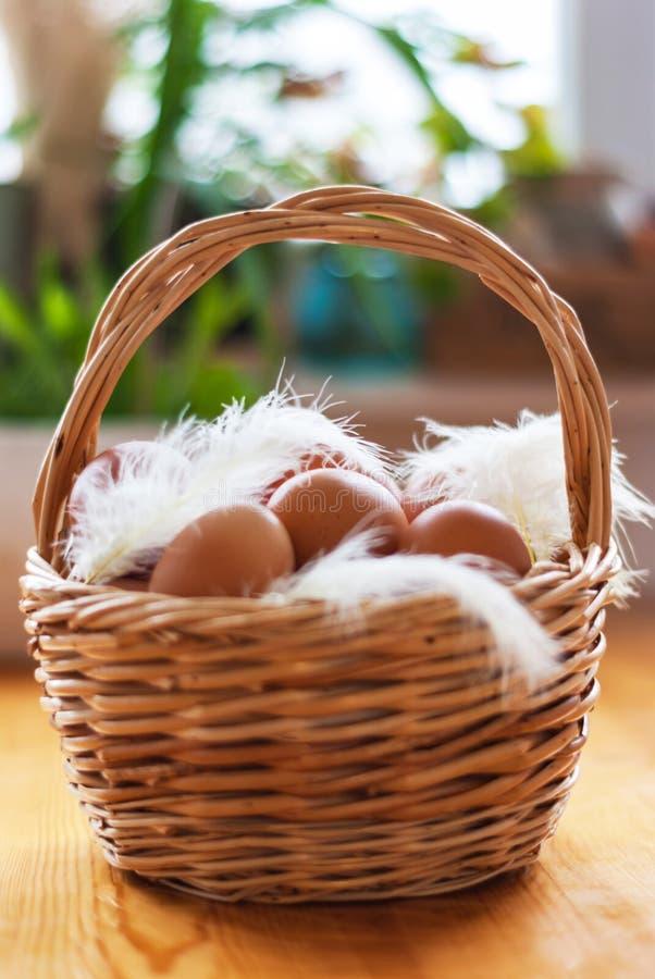 Zbliżenie kosz z organicznie kurczaków jajkami i piórka, Defo zdjęcia royalty free