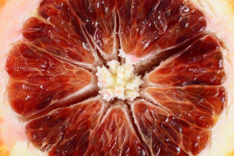 Zbliżenie krwionośnej pomarańcze plasterek obraz stock